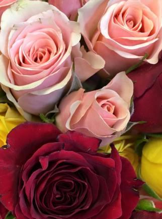 flower-19
